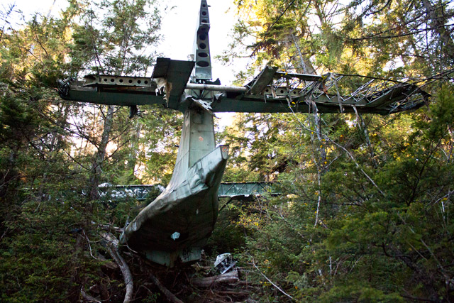 plane crash hike tofino
